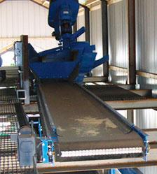 Distribution Conveyor System
